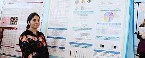 Female student posing in front of her research poster at the 2019 Honors Student Board Poster Competition.