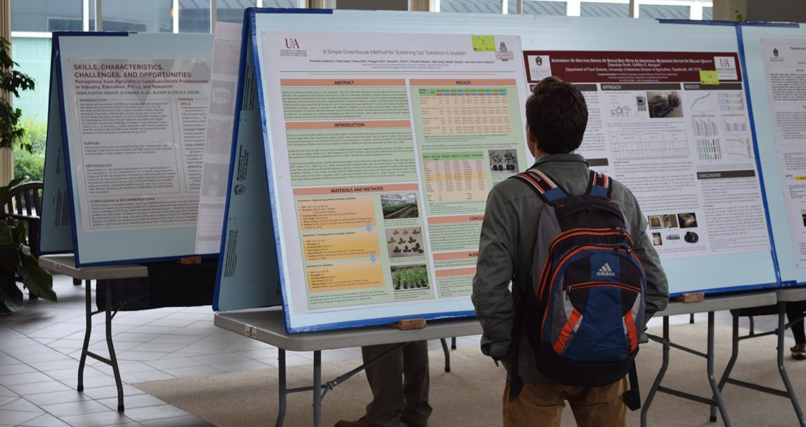 Student Board Poster Competition